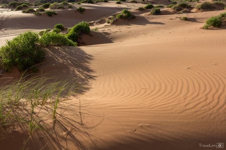 Sand Dune with grass