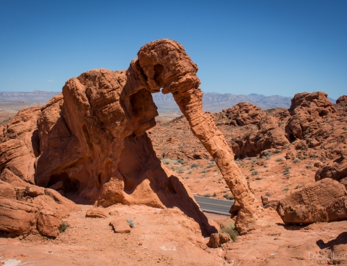 Tag 9 (12.05.2016) – Valley of Fire – Las Vegas