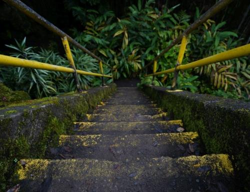 Tag 19 (Big Island) – Südlichster Punkt der USA