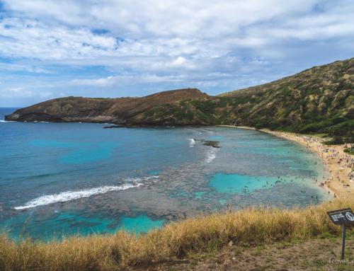 Tag 3 (O'ahu) – Paradiesische Unterwasserwelt mit Feuerwerk