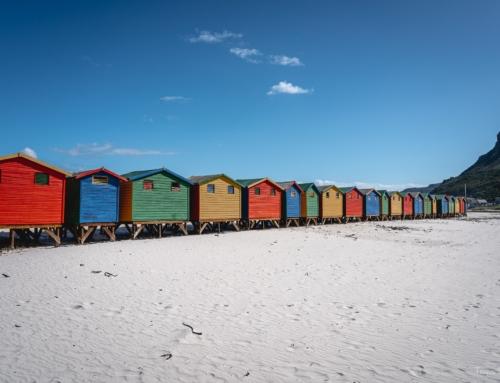 Südafrika Tag 12 – Süße Pinguine und bunte Häuschen am Strand