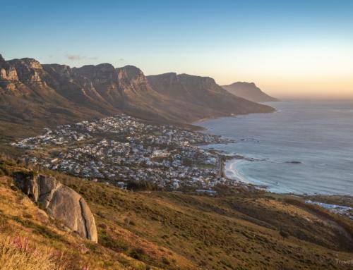 Südafrika Tag 14 – Kapstadt und der Lion's Head